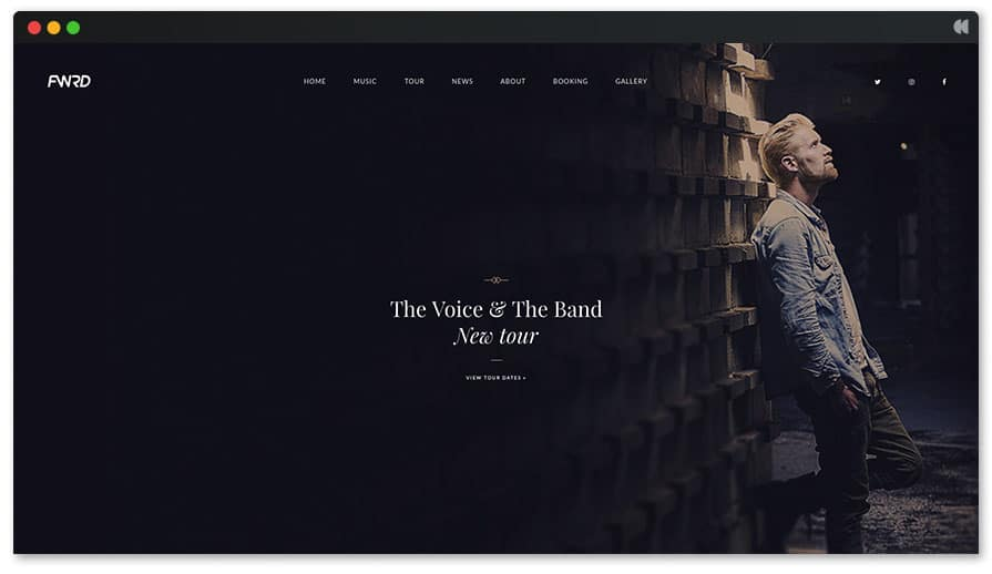 The Voice Singer WordPress theme