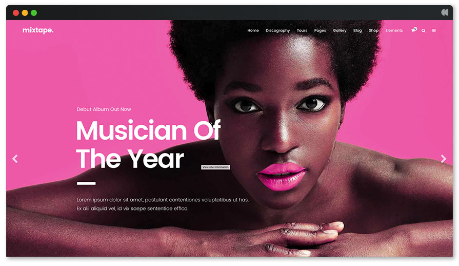 Mixtape's colorful WordPress interface for musician