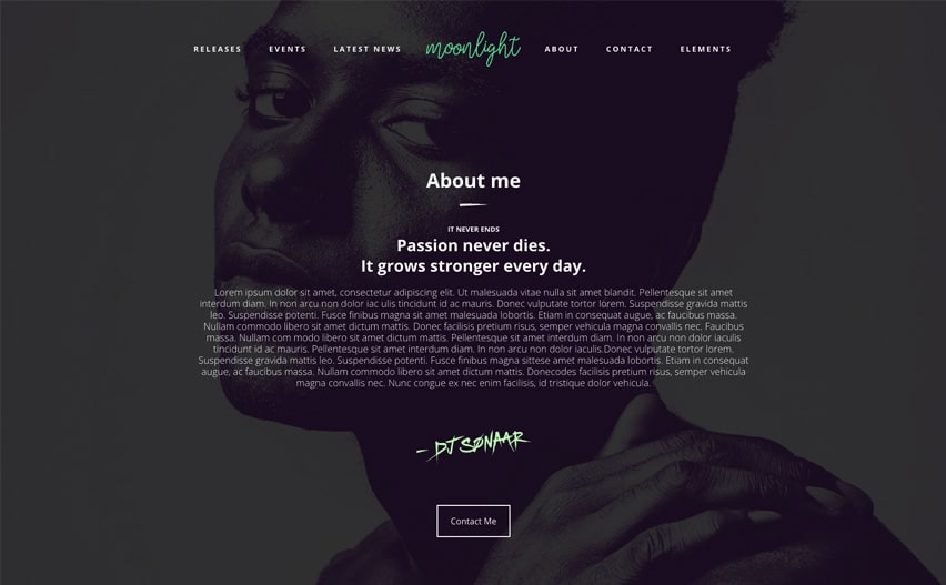 WordPress Theme for Artists
